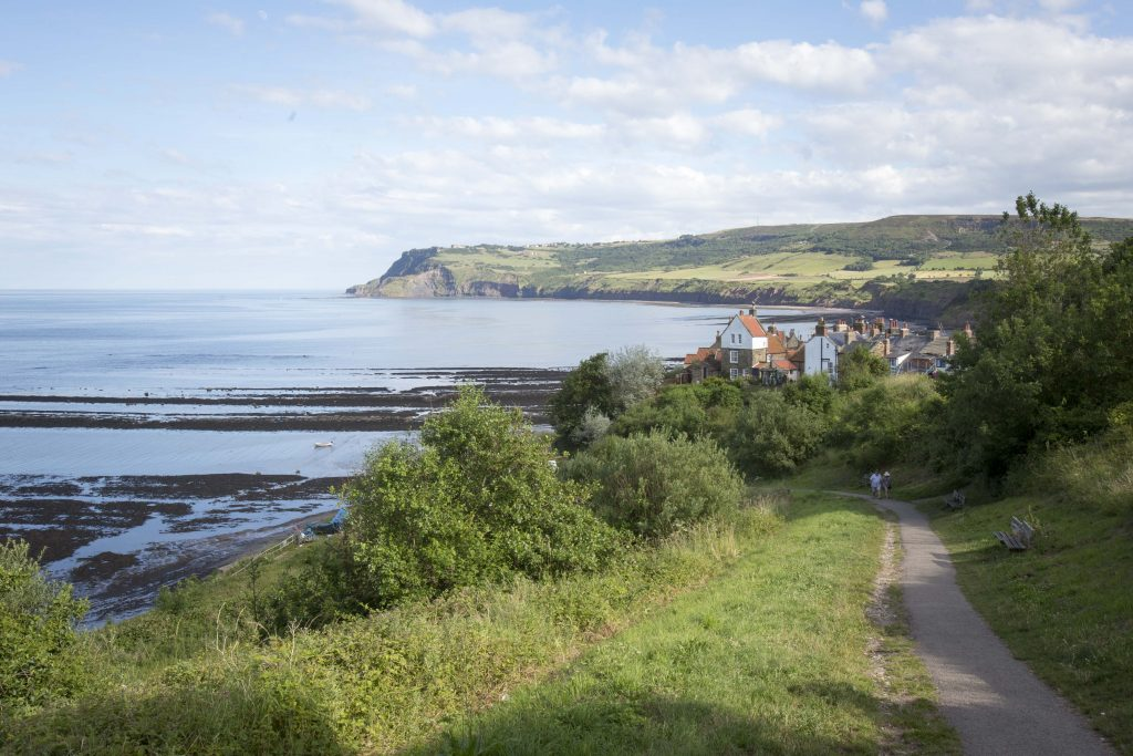 Robin Hoods Bay Land and Seascape