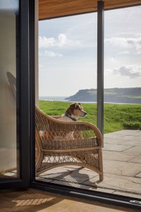 Charity, Robin Hood's Bay, North York Moors National Park. View from link building.